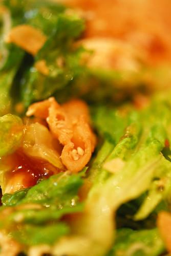 Chinese Chicken salad - DSC_0860