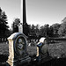 Oakwood Cemetery - Troy, NY - 05 by sebastien.barre
