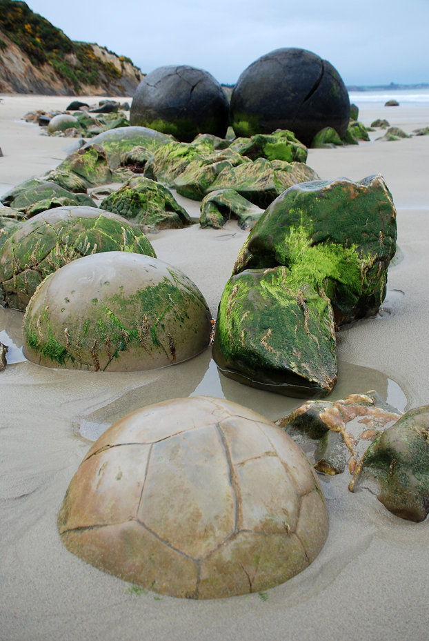 The Mysterious Moeraki Boulders
