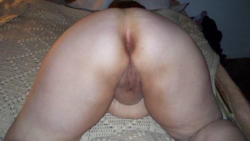 anal porn queen sex download pics: analsex