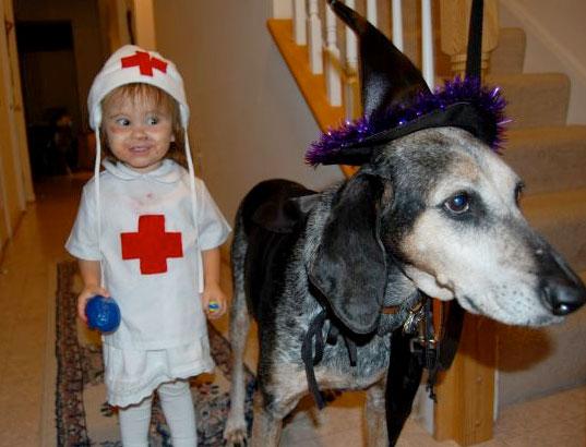 Witchy Dog + Zombie Nurse