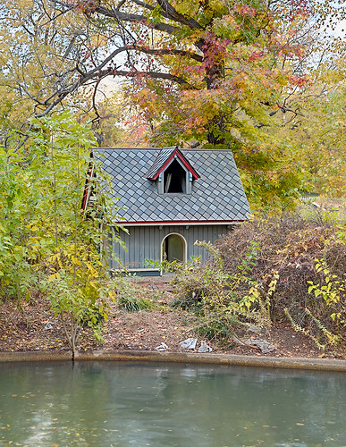 Lafayette Square Neighborhood, in Saint Louis, Missouri, USA - Lafayette Park - duck house