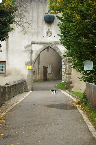 Entrance of Schloss Harburg