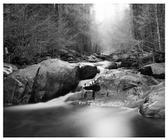 silvery stream | Hume lake (ART SRISAK | PHOTOGRAPHY) Tags: california light bw reflection mamiya film mediumformat minimal colorless sequoia monart humelake 123bw autaut rb67pros filmforward artsrisak