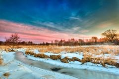 My back yard (jrobfoto.com) Tags: winter mist tree ice grass animal river landscape frozen stream tracks trails prairie hdr springbrook photomatix omot jonathanrobsonphotographycom viapixelpipe