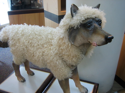 Wolf in sheeps clothing. Dont be deceived.