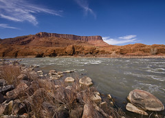 Colorado River (Dave Arnold Photo) Tags: pictures usa southwest west canon river utah us photo desert image photos arnold picture arches pic images photograph canyonlandsnationalpark coloradoriver canyonlands western getty moab sw archesnationalpark mesa southwestusa swusa westernus davearnold darnold desertmesalakerivertreemountain davearnoldphoto davearnoldphotocom