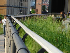 High Line (rosinberg) Tags: park city nyc railroad newyork urbannature greenery highline