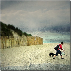 On The Beach (pixel_unikat) Tags: boy sea dog france beach fence sand textured thankstoclivesaxfortexture