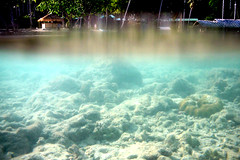 Shallow Water on Koh Ngai Island, Thailand (_takau99) Tags: ocean trip travel sea vacation holiday uw water topv111 thailand island topv555 topv333 nikon marine asia southeastasia underwater indian indianocean topv444 january topv222 thai tropical coolpix shallow s1 hai trang 2007 andaman andamansea shallowwater kohngai ngai kohhai takau99