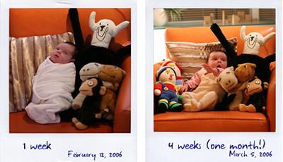 Erik van der Neut - Lola, 1 & 4 weeks