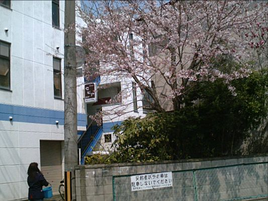 080422town04