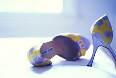 hello luva (*Peanut (Lauren)) Tags: blue white yellow still shoes purple heels lovelovelove manoloblahnik helloluvaisareferencetosatccarriecallshershoesherluvasp theofficehasgivenmemoretpsreportstowritesoiwillcatchupsoon isthereasafeshoegroupoutthereidontneedfetishistslookingatthis
