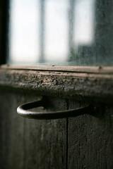 III (Andreu Robust) Tags: door wood windows brown 3 verde green window ventana pom puerta madera iii finestra pomo porta tres fusta verd ferro hierro marrn marr mywinners