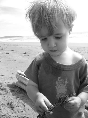 budda beach baby