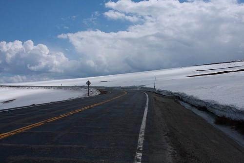 Montana June 208 019