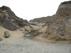 IMG_2877 Alt CCT+seep+beach (pease press) Tags: fortfunston coastaltrail