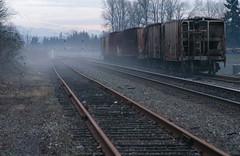 .20040110_205a...Hoppers in fog (listorama) Tags: railroad winter fog washington track tracks unionpacific renton mtrainier bnsf hoppers rollingstock burlingtonnorthernsantafe blackriverjunction 1000000railcars rentonjunction rstaot