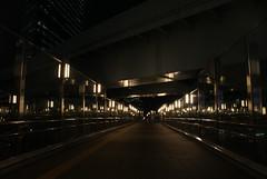 アルファ300で撮した汐留の遊歩道