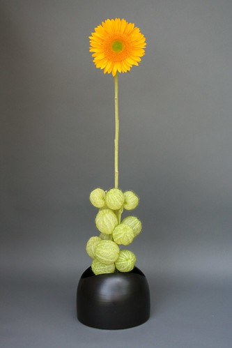 Ikebana-mass and line
