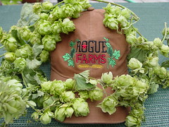 Rogue Farms Hat
