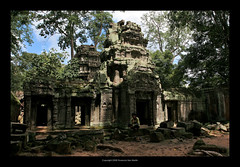 Ta Prohm Temple, Cambodia  414