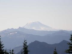 Adams from Shriner Peak lookout.