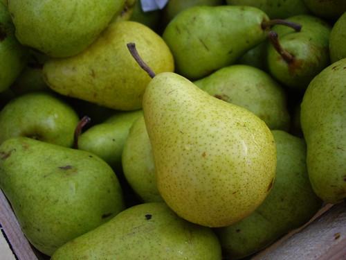 Pears from Wayward Seed Farm