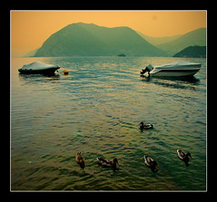 (Barry McGrath) Tags: sunset italy lake mountains water landscape boats lago holidays ducks september monte 2008 iseo lakeiseo aplusphoto barrymcg bazzymcg iseola