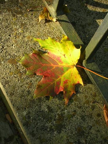 October 144