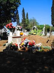 Tumbas (Srch) Tags: flores cemetery lapida cementerio tumba cruz muertos tumbas bajacalifornia tijuana tradicin panten dademuertos cempasuchil tradicionesmexicanas 2denoviembre flordecempasuchil panteonesmexicanos