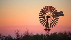 Dunmarra Windmill