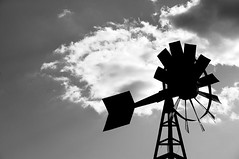 old windmill (instantkamera_photography) Tags: thanksgiving blackandwhite bw vineyard quebec instantkamera