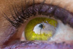 Yellow Eyes (Juan herrera Photography) Tags: blue friends sky white house black macro tree green eye make up yellow clouds cat canon lens eyes lashes skin 10 makeup palm million pupil xti abigfave 10millionfriends