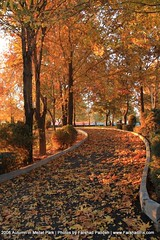 Autumn in Mellat Park of Tehran (FarshadPix) Tags: park autumn trees sunset orange fall nature season landscape raw day iran tehran   farshad     mellat   1387  sigma1770  picasaweb    palideh   farshadpix farshadpixcom