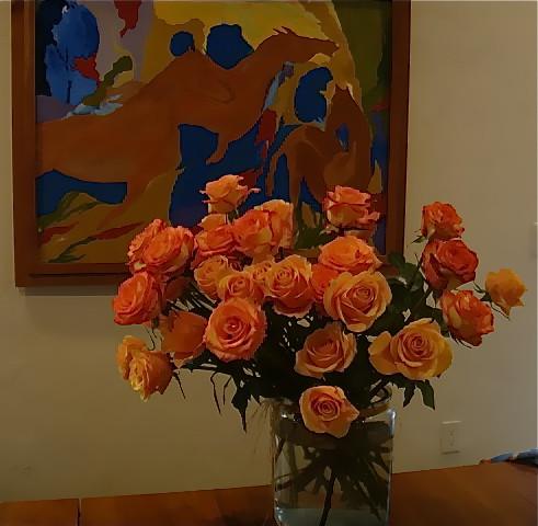 Ecuador-christmas-roses