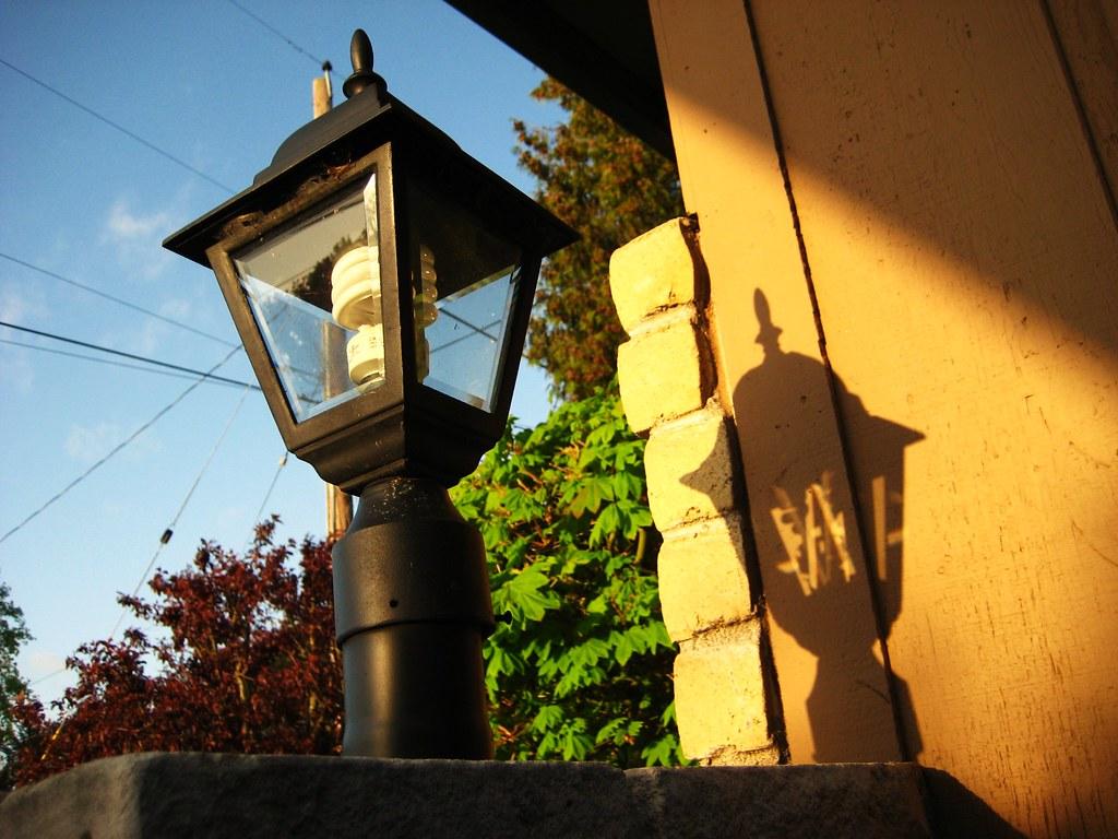 2010-04-22 shadow 003