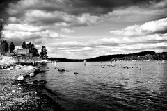Along the Shore (Quixotic Pixels) Tags: seattle blackandwhite bw landscape washington pacificnorthwest fauxinfrared