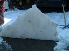 立ち上がった氷