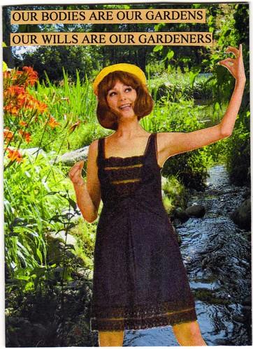 IF: Garden