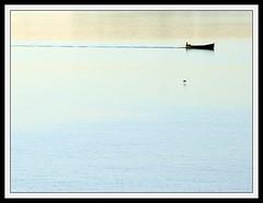 The boat and the bird... (Claudio Marcon) Tags: blue brazil bird nature water rio brasil river boat barco natureza portoalegre minimalism minimalismo rs guaba riograndedosul fotoclube platinumheartaward claudiomarcon sognidreams claudiolmarconribeiro