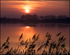 Sunset and Grass (Mike Carter) Tags: sunset lake grass landscape nikon 18200vr d80 karmapotd karmapotw