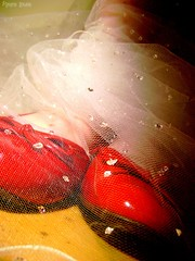 Magic (Honey Pie!) Tags: red fairytale dorothy shoes magic vermelho fairy ameliepoulain sapato mgico thewizardofoz fada poulain mgicodeoz amliepoulain asortafairytale contodefadas cybershotdscs650