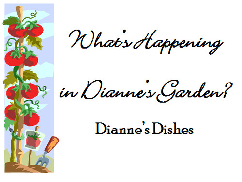 What's Happening in the Garden Graphic