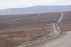 Dalton Hwy-pipeline (mistabrite) Tags: arctic oil pipeline daltonhighway drilling haulroad arcticoildrilling oildrillinginalaska
