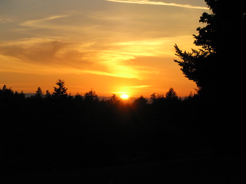Sunset In Camas, WA