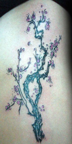 tree tattoo (Set) · stomach work- ribs (Set)