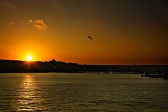 Anochece en Eminönü (belthelem) Tags: sunset sun sunrise turkey nikon türkiye d70s istanbul mosque turquia anochecer estambul galata goldenhorn eminonu haliç cuernodeoro