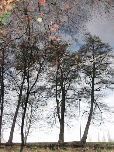 Reflections of Allariz, Galicia