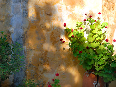 Light and colors of a Greek afternoon (MarcelGermain) Tags: travel flowers blue light red plant green colors leaves yellow wall geotagged greek nikon europe paint colours shadows geranium rodes grcia  d80 marcelgermain